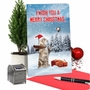 Hysterical Merry Christmas Greeting Card From NobleWorksCards.com - Santa Cat Selfie image 5