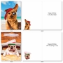 Funny Birthday Card By Michael Quackenbush From NobleWorksCards.com - Shaggy Dogs image 4