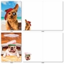 Hilarious All Occasions Greeting Card By Michael Quackenbush From NobleWorksCards.com - Shaggy Dogs image 4
