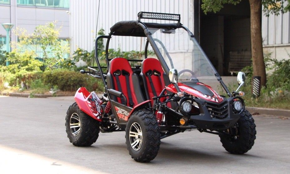 "<p><strong><span style=""color: black;""><span style=""font-size: large;"">150cc to 200cc Adult Size Go Karts </span></span></strong></p>"