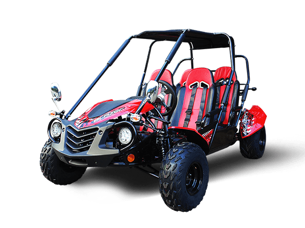 "<p><strong><span style=""color: black;""><span style=""font-size: large;"">4-SEATER GO KART MODELS</span></span></strong></p>"