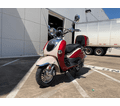 All New 150cc Trailmaster Sorrento .  Great Retro Euro Style. Ships Fully Assembled One year warranty.