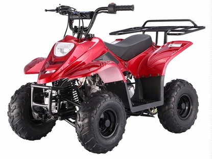Coolster 110cc Youth Quad/ Calif Legal Model -