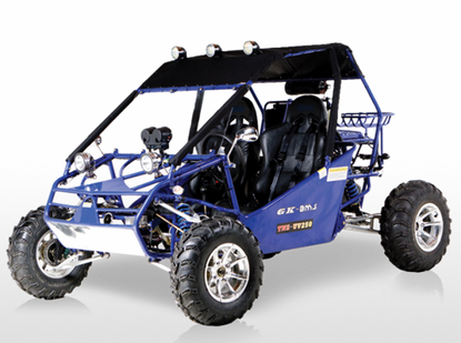 BMS 300cc Power Buggy Automatic - Rugged Suspension - Free Shipping