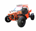 BMS 800cc V-Twin L-4 Dune Buggy