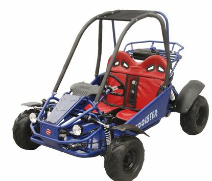 Coolster Panther 125cc Deluxe Youth Go Kart - Calif Legal -