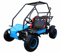 Coolster Panther- GK6125B--125cc Deluxe Youth Go Kart - Calif Legal -