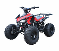 "Jet Moto Deluxe Cheetah 125 cc Sport Quad -<b><font color=""red""><font size=""3"">#1 TOP CHOICE </font></font></b>"