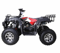 JET MOTO Maxi-X- 12 Deluxe 200 Sport-Utilty ATV is a Class Leading Sport-Utility Quad - CALIF LEGAL