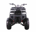"<H4>Jet Moto Series</h4> Wrangler-Ultra X5 125cc Sport /Utility ATV -With Larger Size 8"" Tires -Handlebar Spotlight Included Semi- Automatic CVT Transmission with Reverse-  Fast Free Shipping - FREE Goggles & Gloves! - Remote Kill Switch - FREE SHIPPING"