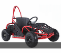 Kicker EX1000  Electric Go Kart  - 48 Volts - Speeds to 16mph! Calif Legal!