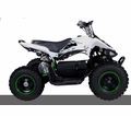 Kicker Ninja 350-Watt - 24-Volt Kids Electric Quad - Awesome Price! Real Tires, Best Price!