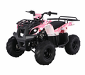 "Jet Moto Utility/Rancher 110  ATV ""Now Calif Legal"" Front and Rear Racks"