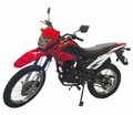 Kymoto Enduro DB-250cc - IN-STOCK-