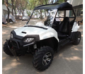 NEW 2017-18 Cyclone ULTRA  170 UTV - Automatic with Reverse - Free Windshield -