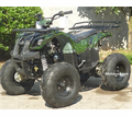 Regency Mountain Cat 110-SU Sport/Utility ATV with Reverse - LargerTires!