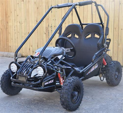 Trailmaster Go Kart Xrx Kids Mini From Calif Legal Motos