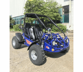"Trailmaster XRS 200 EFI  Buggy / Go-Kart.-Now With 5-Point Harness - <b><font color=""red""><font size=""4""> </font></font></b>"