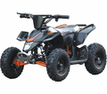 "Trailmax Electric ATV ""Mini Banshee"" with Reverse - 350 Watts / 24 Volts - Perfect for Little Kids!  Fully Adjustable Shocks!"