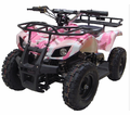 Trailmax Fully Electric ATV / Quad