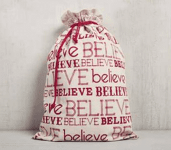 Believe Holiday Collection Gift Bag by Mona B