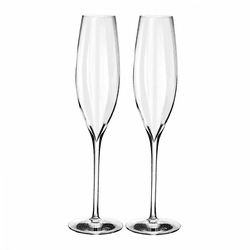 Elegance Optic Classic Champagne Flute Pair by Waterford
