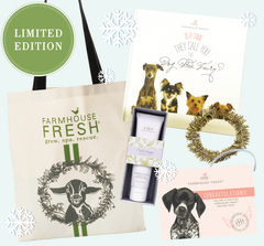 Animal Lovers Limited Edition Holiday Gift Set