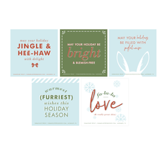 Holiday FHF Greeting Cards