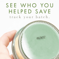 TRACK YOUR BATCH