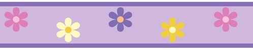Danielle's Daisies Baby, Childrens and Teens Wall Border by Sweet Jojo Designs - Click to enlarge
