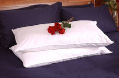 King Size Set of 2 White Goose Feather and Down Pillows
