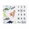 Mod Dino Boy Milestone Blanket Monthly Newborn First Year Growth Mat Baby Shower Gift Memory Keepsake Picture by Sweet Jojo Designs - Blue, Green and Grey Modern Dinosaur Rawr