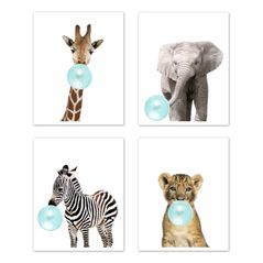 Safari Jungle Animal Wall Art Prints Room Decor for Baby, Nursery, and Kids by Sweet Jojo Designs - Set of 4 - Elephant Giraffe Lion Zebra Blue Bubble Gum