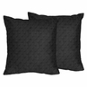 Solid Black Minky Dot Decorative Accent Throw Pillows - Set of 2