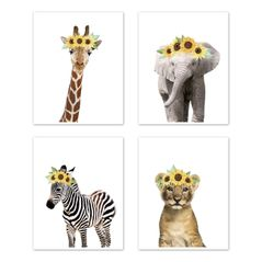 Sunflower Safari Jungle Animal Wall Art Prints Room Decor for Baby, Nursery, and Kids by Sweet Jojo Designs - Set of 4 - Elephant Giraffe Lion Zebra Yellow Boho Watercolor Floral Flower