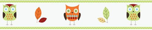 Turquoise and Lime Hooty Owl Children and Kids Wall Border by Sweet Jojo Designs - Click to enlarge