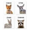 Woodland Forest Animal Wall Art Prints Room Decor for Baby, Nursery, and Kids by Sweet Jojo Designs - Set of 4 - Fox, Deer, Bunny, Raccoon Be Brave