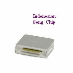 INDONESIAN  Song Chip         Magic Mic       1250 Songs