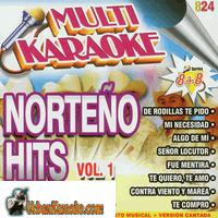 NORTENO HITS Vol. 1 Series 8 + 8    Multi Karaoke    MK 824