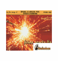 WHEN SPARKS FLY       Pocket Songs    PS6086