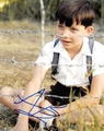 Asa Butterfield Signed 8x10 Photo