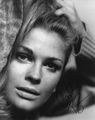 Candice Bergen Signed 8x10 Photo - Video Proof