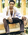 Chiwetel Ejiofor Signed 8x10 Photo - Video Proof
