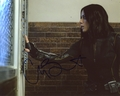 Chloe Bennet Signed 8x10 Photo