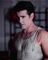Colin Farrell Signed 8x10 Photo