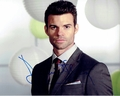 Daniel Gillies Signed 8x10 Photo