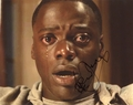 Daniel Kaluuya Signed 8x10 Photo