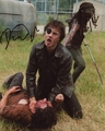 David Morrissey Signed 8x10 Photo