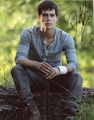Dylan O'Brien Signed 8x10 Photo