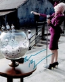 Elizabeth Banks Signed 8x10 Photo - Video Proof